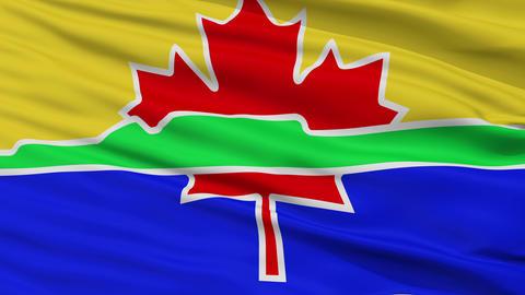 Closeup Thunder Bay city flag, Canada Animation