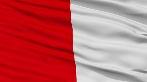 Closeup Cork city flag, Ireland Animation