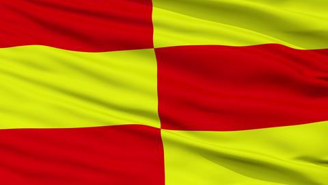 Closeup Briceni city flag, Moldova Animation