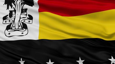 Closeup Madang city flag, Papua New Guinea Animation