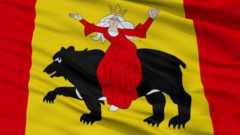 Closeup Tomaszow Mazowiecki city flag, Poland Animation