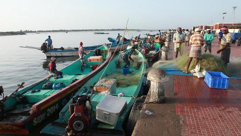 FISHING BARBOUR-KERALA Footage