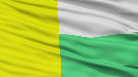 Closeup Zielona Gora city flag, Poland Animation