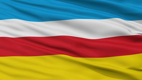 Closeup Zory city flag, Poland Animation