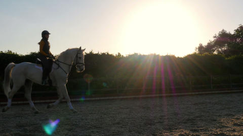 dressage, horse show rider girl at sunset Footage