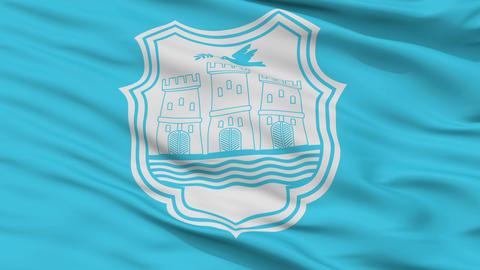 Closeup Novi Sad city flag, Serbia Animation