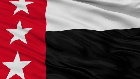 Closeup Republic of the Rio Grande city flag, USA Animation
