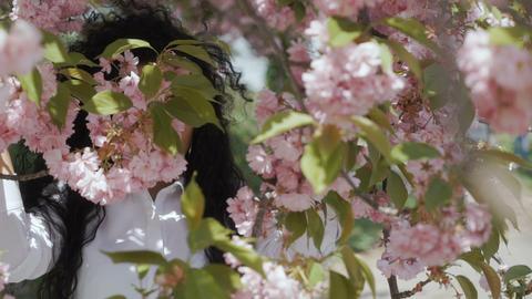 Elegant beautiful woman in pink sakura flowers Footage