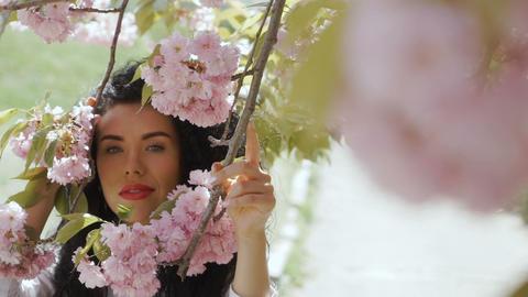 Beautiful woman looks in camera through pink sakura flowers Footage