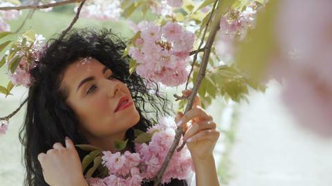 Gorgeous woman enjoy sakura flowers Footage