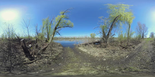 Lake and flooded land panorama Footage