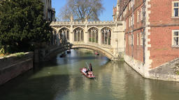 Punting on the River Cam by the Bridge of Sighs Cambridge UK 영상물