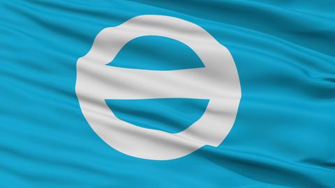 Closeup Gamagori city flag, prefecture Gamagori, Japan Animation