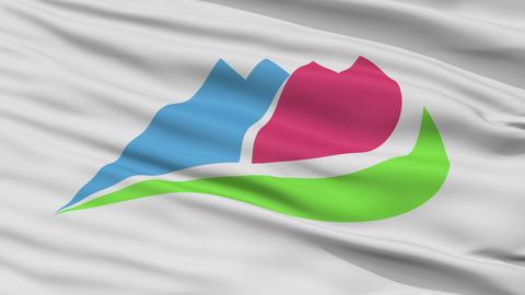 Closeup Ina city flag, prefecture City, Japan Animation