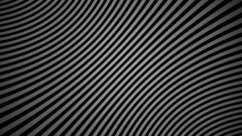 zebra line Animation