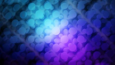 dot lights Animation