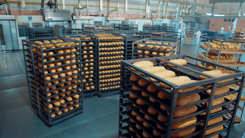 bread bakery food factory production with fresh products Live Action
