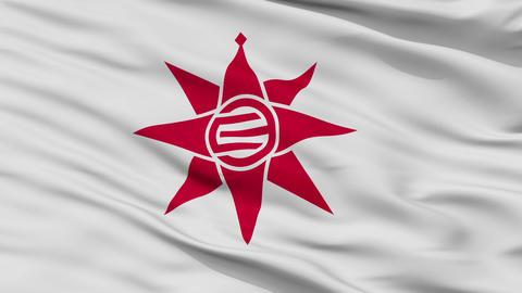 Closeup Yokosuka city flag, prefecture Kanagawa, Japan Animation