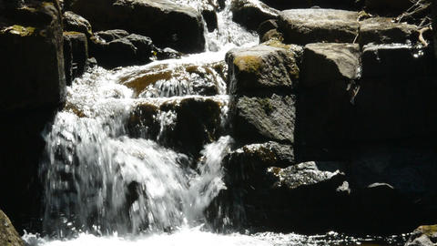 Fix : A brook flowing through the sunny forest 영상물