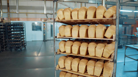 Bread fresh baked bun bread bakery food factory production with fresh products Footage