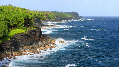 Shoreline Of Hawaii 영상물