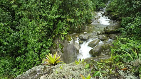rain forest river slow motion Footage