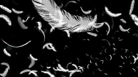 羽根がこっちに向かってくる CG動画