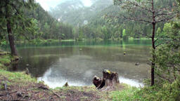 Rain on Fernsteinsee green mountain lake at Fernpass in Nassereith Austria Footage