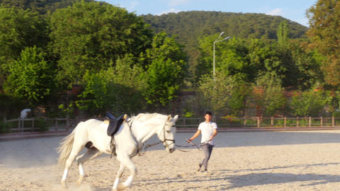 AKYAKA - TURKEY, MAY 2015: stableman warming up horse riding Footage