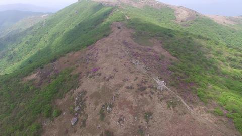 Landscape of Cheonseong Mountain 영상물