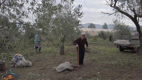 4k Aerial shot of typical Italian old farm man and woman walking on a olive farm Footage