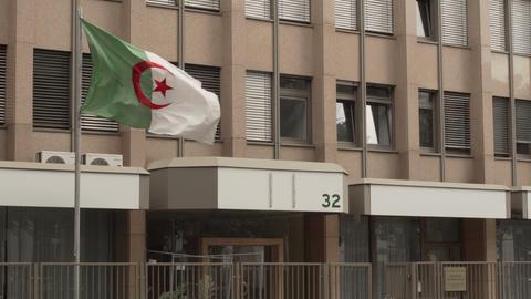 Algeria Embassy Flag in Frankfurt Germany GIF