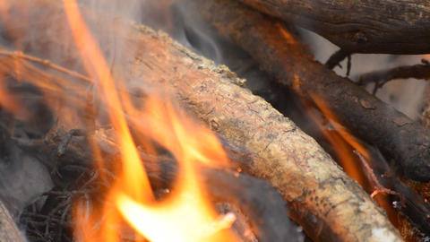 Wood Burns In Fire Footage