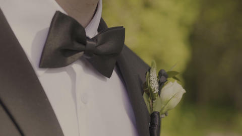 Man the groom in a wedding formal costume with butterfly. Suit, Hands, care, tie Footage