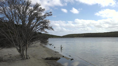 Fitzgerald River National Park, Western Australia Footage