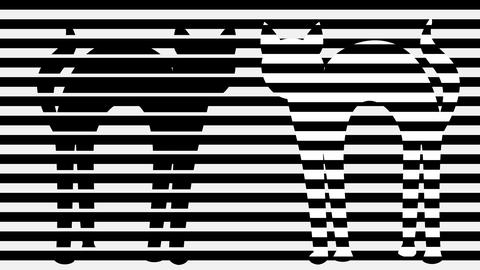 Two cats in monochrome animation. Stripped black and white background with cat Animation