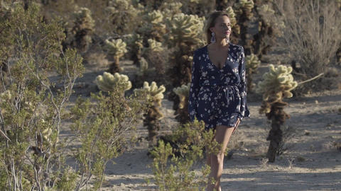 woman walks between cacti in the desert, 4K Live Action