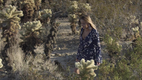 beautiful woman walks between cacti in the desert Live Action