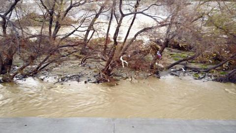 Flood Damage In Los Angeles River 영상물