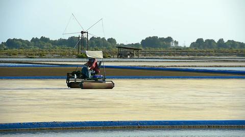 Salt farm with salt roller car in salt field Live Action