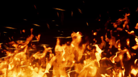 Close-up of colorful bright fire animation effects on black background Animation