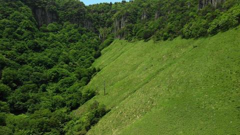 新緑の山を飛ぶ ライブ動画
