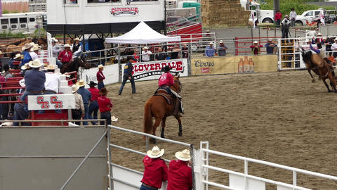 Rodeo - 08 Live Action