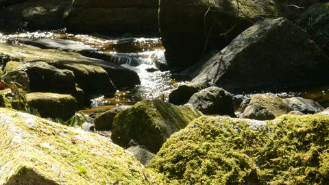Fix : A stream of water shining in the light and a rock covered with moss ビデオ