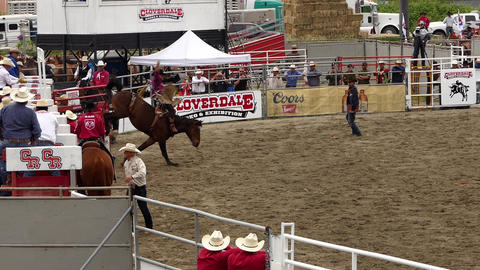 Rodeo - 12 Live Action