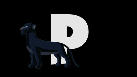 Letter P and Panther (foreground) Animation