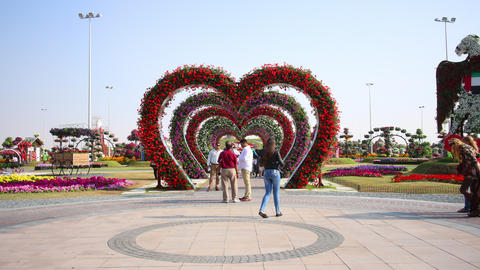 4k time lapse with flower heart from dubai Footage