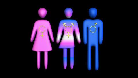 Transgender icon symbol Animation