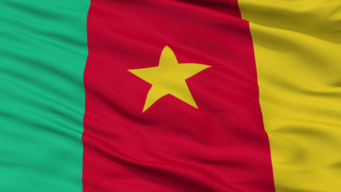 Close Up Waving National Flag of Cameroon Animation