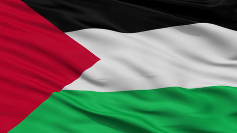 Close Up Waving National Flag of Palestine Animation